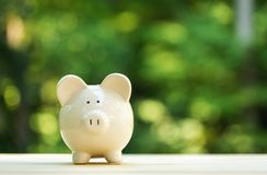 A piggy bank on forest background. A piggy bank saving and investment theme on a shiny green forest background stock photos