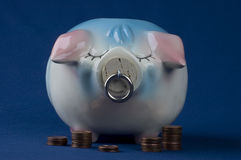 Piggy Bank Full Front View With Pennies Royalty Free Stock Photos