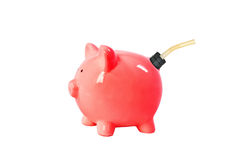 Piggy bank gas can Stock Photo