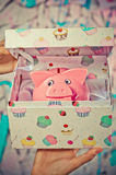 Piggy bank in gift box Stock Images