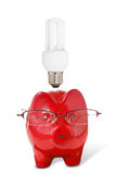 Piggy-bank with glasses and  light bulb Royalty Free Stock Image