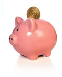 Piggy Bank With Gold Coin Royalty Free Stock Photography