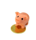 Piggy bank and gold coin.Isolation Royalty Free Stock Photography