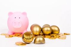 Piggy bank and gold coin Royalty Free Stock Images