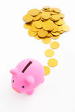 Piggy bank and gold coins Stock Photography