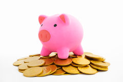 Piggy bank and gold coins Royalty Free Stock Photos