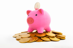 Piggy bank and gold coins Royalty Free Stock Images