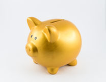 Piggy bank in gold color on left side Royalty Free Stock Images