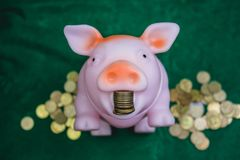 Piggy bank gold color and stack of money safe in the garden outside. Piggy bank gold color and stack of money safe in the garden outside finance Stock Photography