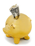Piggy bank gold Royalty Free Stock Images