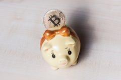 Piggy bank and a golden bitcoin stock photos