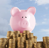 Piggy bank on golden coin Royalty Free Stock Image
