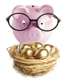 Piggy bank and golden egg. Pink piggy bank and golden egg in the nest Royalty Free Stock Images