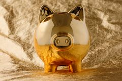 Piggy bank golden on a gold background. Business and Finance. Save on the dream royalty free stock images