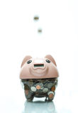 Piggy bank. Is good for saving the money Royalty Free Stock Image