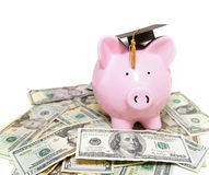 Piggy bank with graduation cap. On cash Royalty Free Stock Image