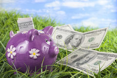 Piggy bank in the grass Stock Images