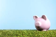 Piggy Bank on grass, blue sky, savings, retirement, freedom Stock Images