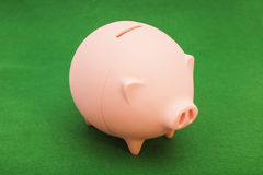 Piggy bank on green. Background Royalty Free Stock Photo