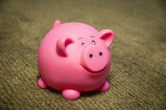 Piggy bank on green background. Pink piggy bank on green carpet Stock Photos