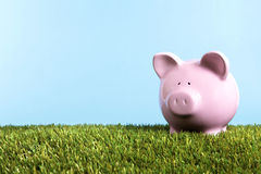 Piggy Bank green grass blue sky copy space, retirement savings concept Stock Photos