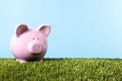 Piggy Bank summer saving green grass blue sky copy space Stock Photo