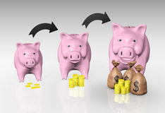 The piggy bank is growing up Stock Images