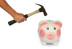 Piggy bank and hand with ้hammer isolated Stock Photos
