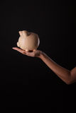 Piggy bank in hand Royalty Free Stock Image