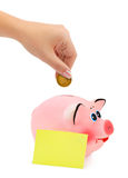 Piggy bank and hand with coin. Isolated on white background stock photo