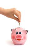 Piggy bank and hand with coin Stock Photography