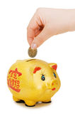 Piggy bank and hand with coin isolated Royalty Free Stock Photo