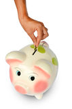 Piggy bank and hand with coin isolated Royalty Free Stock Image