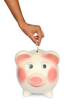 Piggy bank and hand with coin isolated Royalty Free Stock Photography