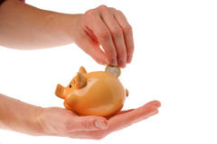 Piggy bank, hand and euro currency Stock Image