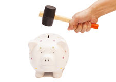 Piggy bank and hand with hammer Stock Image