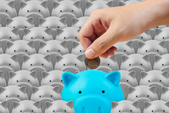Piggy bank and hand, saving finance concept Royalty Free Stock Photos