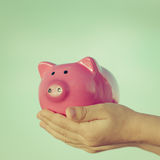 Piggy bank in hands Stock Photos