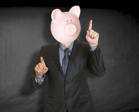 Piggy bank head Stock Images
