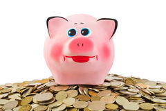 Piggy bank and heap of coins Royalty Free Stock Photos