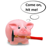 Piggy bank holding hammer in his mouth Royalty Free Stock Image