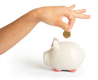 Piggy bank with humans arm. On isolated white background, close up view Royalty Free Stock Photos