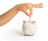 Piggy bank with humans hand. On isolated white background, close up view Stock Photography