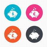 Piggy bank icons. Dollar, Euro, Pound moneybox. Circle buttons. Piggy bank icons. Dollar, Euro and Pound moneybox signs. Cash coin money symbols. Seamless Stock Photos