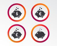 Piggy bank icons. Dollar, Euro, Pound moneybox. Piggy bank icons. Dollar, Euro and Pound moneybox signs. Cash coin money symbols. Infographic design buttons Royalty Free Stock Image