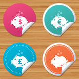 Piggy bank icons. Dollar, Euro, Pound moneybox. Round stickers or website banners. Piggy bank icons. Dollar, Euro and Pound moneybox signs. Cash coin money Royalty Free Stock Images