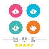 Piggy bank icons. Dollar, Euro, Pound moneybox. Piggy bank icons. Dollar, Euro and Pound moneybox signs. Cash coin money symbols. Calendar, cogwheel and report Royalty Free Stock Image