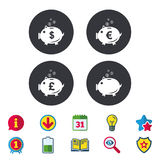 Piggy bank icons. Dollar, Euro, Pound moneybox. Piggy bank icons. Dollar, Euro and Pound moneybox signs. Cash coin money symbols. Calendar, Information and Stock Image