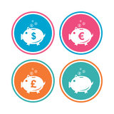 Piggy bank icons. Dollar, Euro, Pound moneybox. Stock Images