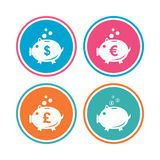 Piggy bank icons. Dollar, Euro, Pound moneybox. Royalty Free Stock Photo